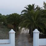 CA Barbate Hotel Palomar Brena 1 de 12 - Andalucía Film Commission