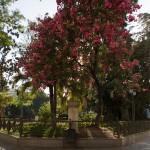 CA Cadiz Plaza de Mina 1 de 1 - Andalucía Film Commission