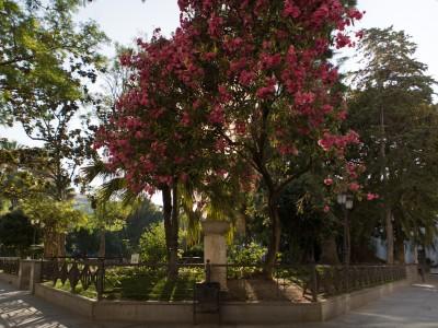 Plazas de Mina y San Antonio