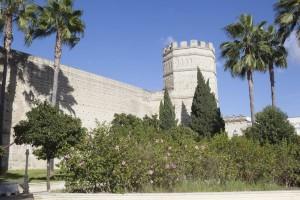 CA Jerez Alcazar 003 - Andalucía Film Commission