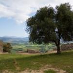 CA Jimena Fra Castillo 7 de 25 - Andalucía Film Commission