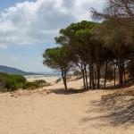CA Tarifa Playa Valdevaqueros 2 de 2 - Andalucía Film Commission