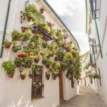 Barrio de la Villa de Priego de Córdoba - Andalucía Film Commission