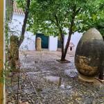 IMG 20191102 WA0016 - Andalucía Film Commission