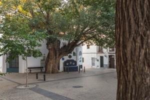 AL Nijar Casco Antiguo 7 de 21 - Andalucía Film Commission
