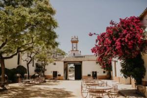joy zamora 2 websize - Andalucía Film Commission