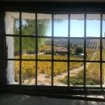 Paiseje Vinedo 3 - Andalucía Film Commission