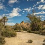 AL Oasis Lawrence de Arabia - Andalucía Film Commission