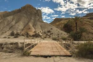 AL Oasis Lawrence de Arabia 3 - Andalucía Film Commission