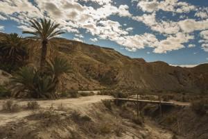 AL Oasis Lawrence de Arabia 4 - Andalucía Film Commission