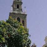 04.Torre de San Pedro - Andalucía Film Commission