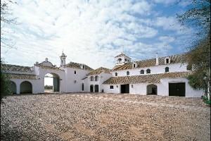 buzona patio 2 - Andalucía Film Commission